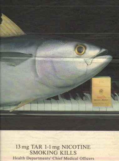 piano+tuna[1]