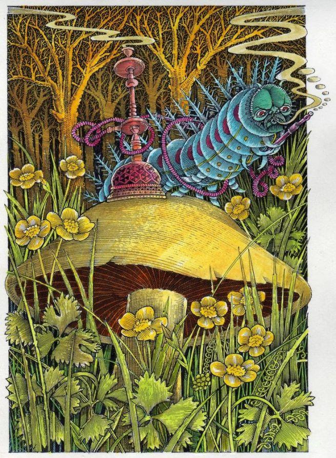 c63649883daee42f8a82b9073ee85c5d--adventures-in-wonderland-alice-in-wonderland[1]