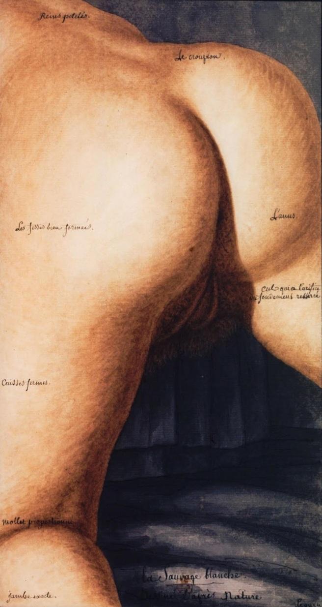 Jean-Jacques Lequeu-La Sauvage blanche