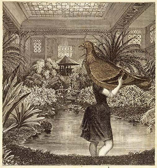 Max Ernst-La Femme 100 têtes-1929